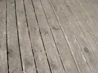 compressed wood lol 3.jpg