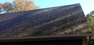 Moss Roof Before.jpg